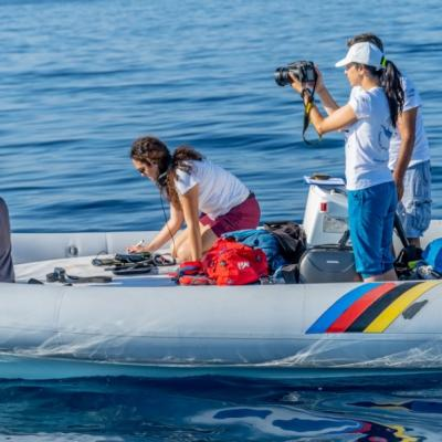Ricerca in mare - Research at sea - Recherche en mer